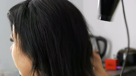 estilizado : Beautiful young woman is drying her long black hair with a hairdryer in beauty salon or hairdresser
