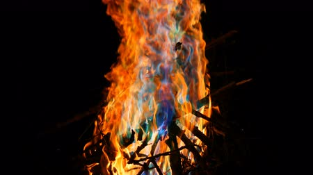 魔女 : Mystical magic rainbow fire changes color to multicolor flames. Bonfire burns in many colors in dark background