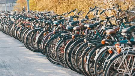 голландский : Amsterdam, Netherlands - April 21, 2019: Parking for bicycles. Many different bicycles parked on a street in special parking lots. The problem of bicycle overload in the country Стоковые видеозаписи