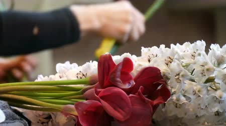 egyetlen virág : Hands of woman florist making a flower arrangement or a bouquet of fresh flowers Stock mozgókép