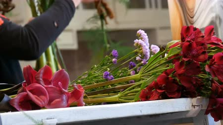 ciruela pasa : Hands of woman florist making a flower arrangement or a bouquet of fresh flowers Archivo de Video