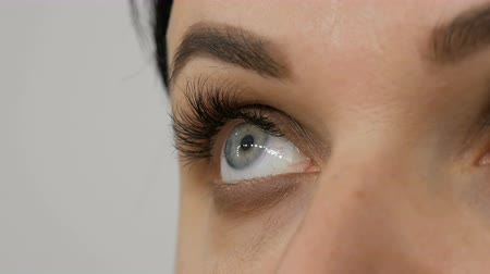 contorno : Close-up view of beautiful woman blue eye with extended eyelashes. Makeup artist applies makeup using special eyebrow and brush eye shadow to a beautiful model. Professional high fashion. Stock Footage