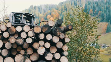 dumping : A Tree trunks neatly in a row. Transportation of timber on truck on the mountain road. Stock Footage