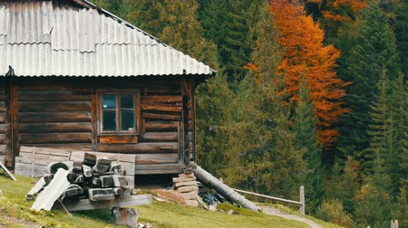 de faia : Old wooden abandoned wooden house for shepherds on background of picturesque Carpathian mountains in autumn. Abandoned building in poor condition Vídeos