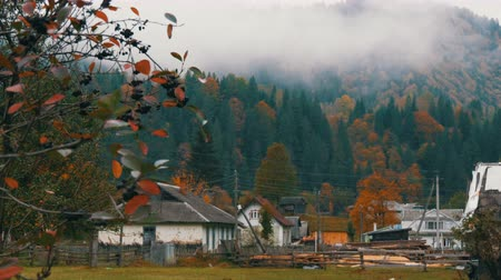 montanhoso : Ordinary Carpathian village in Ukraine. Thick fog over the top of Carpathian autumn mountains in colorful foliage in October.