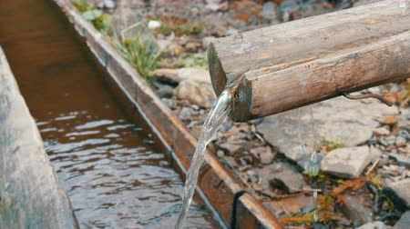 особенности : A clean, transparent mountain water stream that flows down wooden gutter into a special trough Стоковые видеозаписи