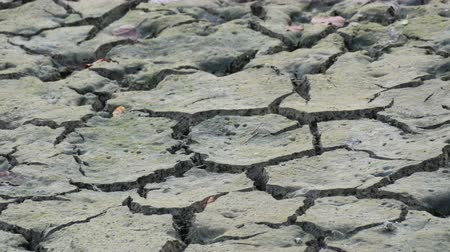 サハラ : Dry land with many cracks. Natural drought. Dry lake with natural texture of cracked clay. Death Valley field. Earth Day Concept