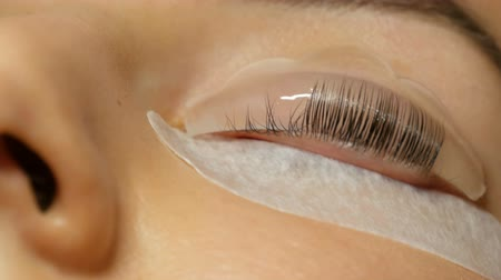champ de coton : Beautician applies special wellness mixture on the client eyelashes close up view. Professional procedure laminating and eyelashes modern healing. Silicone curlers or rollers for curling Vidéos Libres De Droits