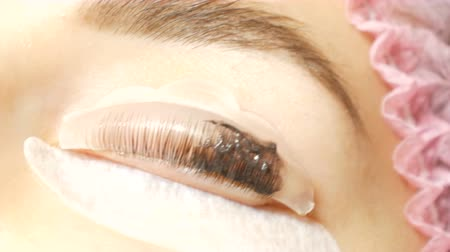 champ de coton : Professional eyelash dyeing with special black paint. Silicone curlers or rollers for curling eyelashes