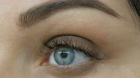 cornée : Eye makeup with special brush and gray eyeshadow. Close-up eye of blue color with long eyelashes