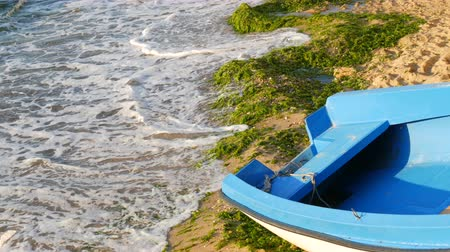 tyrkysový : Empty blue-and-white fishing boat on the seashore on which are green algae thrown out after a storm. Waves with foam beat against the shore Dostupné videozáznamy