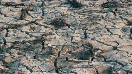 morrer : Dry dehydrated soil. Cracked lake earth due drought Stock Footage