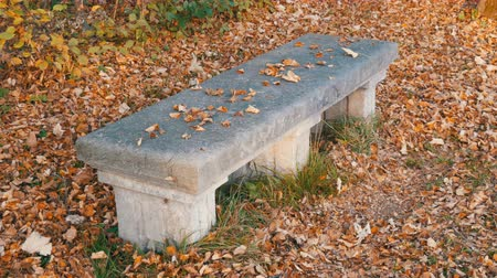 münchen : Old vintage concrete bench in park
