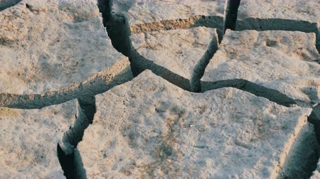 adversidade : Dry dehydrated soil. Cracked lake earth due drought Stock Footage
