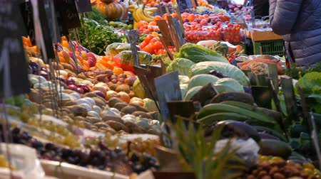kapor : Buyers buy products. Vegetable market in a big city. Huge selection of various vegetables and fruits. Healthy fresh organic vegan food on the counter. Price tags in German. Stock mozgókép