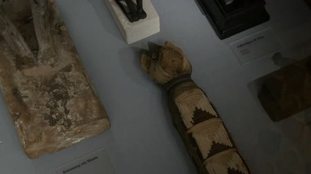 egito : Vienna, Austria - December 19, 2019: Inside the Museum of the History of Art. Department of the History of Ancient Egypt. Authentic cat mummies on display, Inscription in german