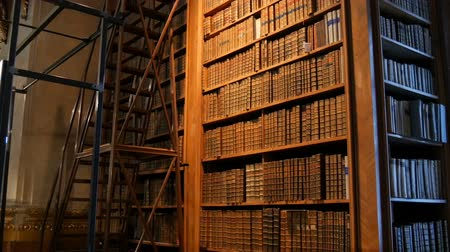ler : Very old vintage books on shelves in an ancient library. Big collection of old uncognizable books