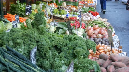 groenteman : Fresh greens in vegetable and fruit market with huge assortment of diverse fruits. Healthy Vegetarian Food. Price tags in German