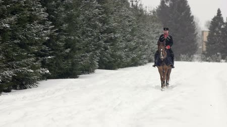 strzałki : Men horseback riding a big brown horse in beautiful snowy winter landscape. Male rider cantering with large elegant stallion along the snowy path through the ranch fields in white winter .