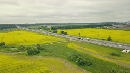 Cars moving on highway on background flower field. Yellow flowers in field Stock mozgókép