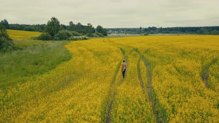 Sky view young woman walking in a flower field. Rural field with yellow flowers