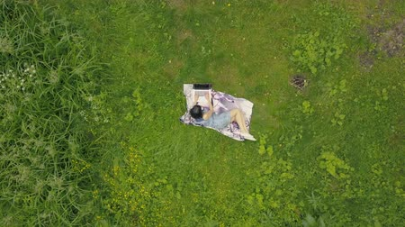 Drone view young woman working on laptop on green grass
