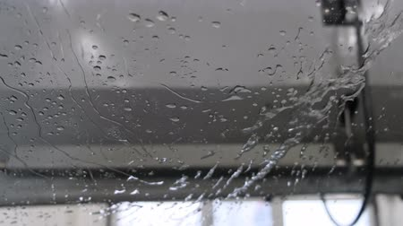 which : water drops on windshield in a car washer blowing Stock Footage