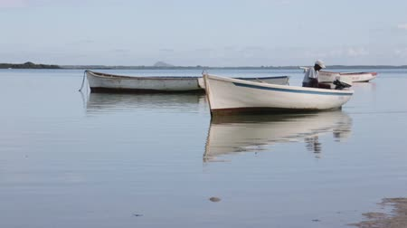 industrial fishing : Fishing boats in the Indian ocean in Mauritius