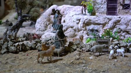 herder : Cuenca, Ecuador - January 3, 2019 - Largest animated nativity scene in South America. Shephard and his flock of sheep and goats. Stock Footage