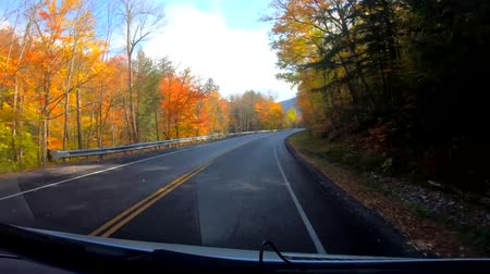 haldokló : TimeLapse 10X - Driving Under Trees and Curves in Peak Color During Fall in Vermont.