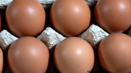 casca de ovo : Dozen eggs in egg carton slides from left to right from above. Stock Footage