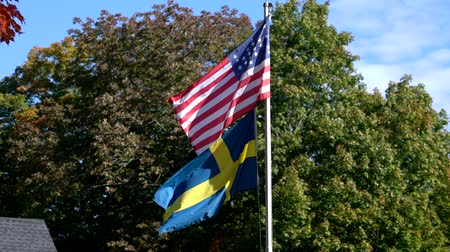 demokratický : American Civil War Flag Flies Over Swedish Flag.