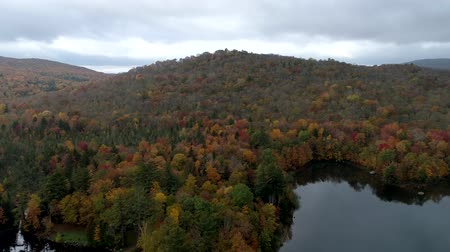 haldokló : Aerial Drone - Fly Over Lake And Hillside Filled With Fall Color Trees in Vermont
