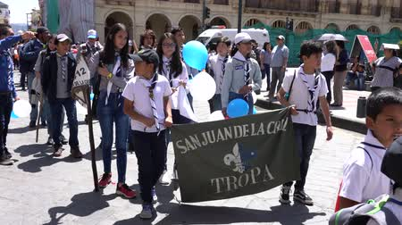 домовой : Cuenca, Ecuador - December 1, 2018 - Boy and Girl Scouts March Together in Celebration