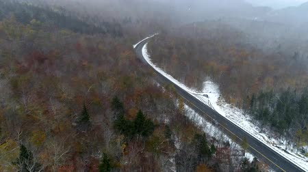 osika : Aerial Drone - Fly Over Forest With Remnant of Fall Colors During Driving Snow Storm 4K