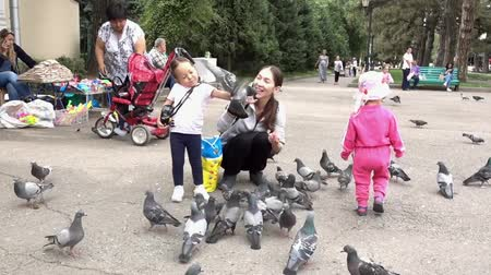 pajarito volando : Almaty, Kazakhstan - 20170531 - Pigeon flies into girls hand in park Archivo de Video