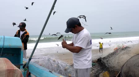 ügyesség : San Pedro, Ecuador - 20180915  -  Birds Fly As Man Fixes Net