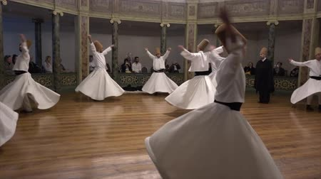 isztambul : Whirling Dervish Demonstration Dancers Youth First Act