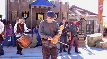 sahne : Penedono, Portugal - 20170701 - Medieval Fair  -  Electric Violin and Pipes w - Sound Stok Video