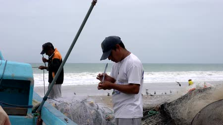 industrial fishing : San Pedro, Ecuador - 20180915  -  Birds Sit On Sand As Man Fixes Net