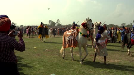 konie : Anandpur Sahib, India - 20180302 -  Hola Mohalla  -  Sikh Festival  -  Horse Parade Before Main Event Wideo