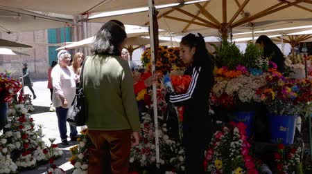 decisioni : Cuenca, Ecuador - 20180920 - Il cliente acquista rose dal venditore ambulante Filmati Stock