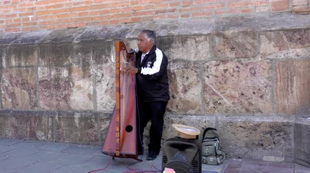 hangszer : Cuenca, Ecuador  -  20180920  -  Man Plays Electric Harp For Tips  -  with Sound Stock mozgókép