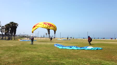 ハング : Tel Aviv, Israel - 2019-04-27 - Paraglide Training on Grass 1 - Yellow then Blue Pull. 動画素材
