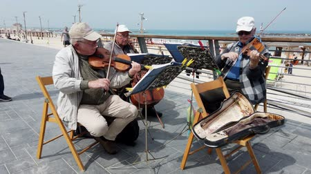 гитара : Tel Aviv, Israel - 2019-04-27 - Elderly String Musicians at Beach with Sound 3 - With Passersby. Стоковые видеозаписи