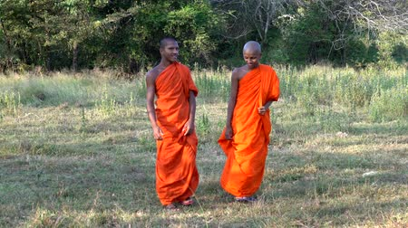 barma : Haberna, Sri Lanka- 2019-03-22 - Two Young Monks Walk Towards Camera in Field Wide To Close.