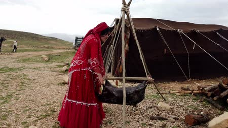 hill tribe : Shiraz, Iran - 2019-04-09 - Qashqai Woman in Red Dress Shakes Goat Skin To Make Yogurt. Stock Footage