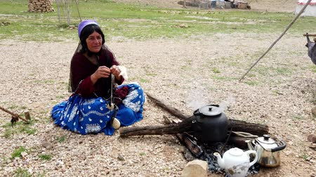 cabra : Shiraz, Iran - 2019-04-09 - Qashqai Woman Spins Yarn From Goat Wool While Sitting.