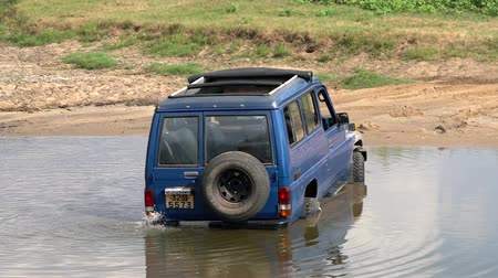 borowina : Minneriya National Park, Sri Lanka - 2019-03-23 - Truck is Stuck in River.