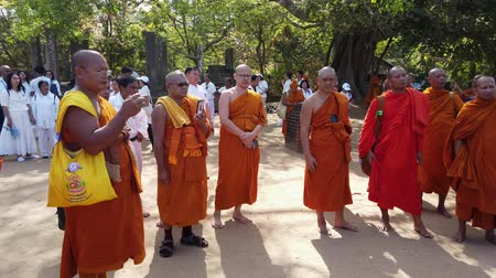 vallási : Polonnaruwa, Sri Lanka - 2019-03-23 - Monks On Tour 3 - In Circle Around Lecturer. Stock mozgókép
